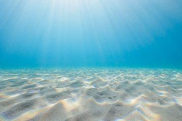 Top Dive Sites 54