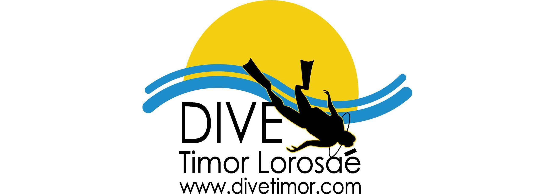 DTL Logo