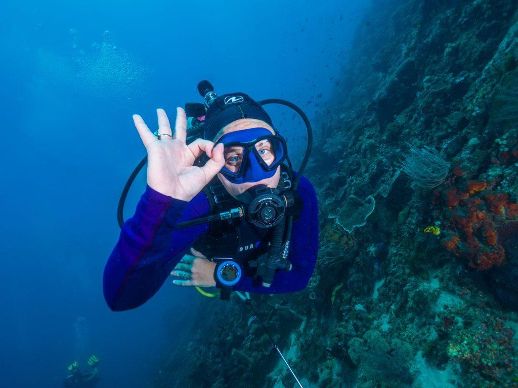 OK.Diver