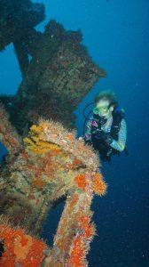 shipwrecks 1