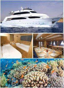 Red Sea Specials 2