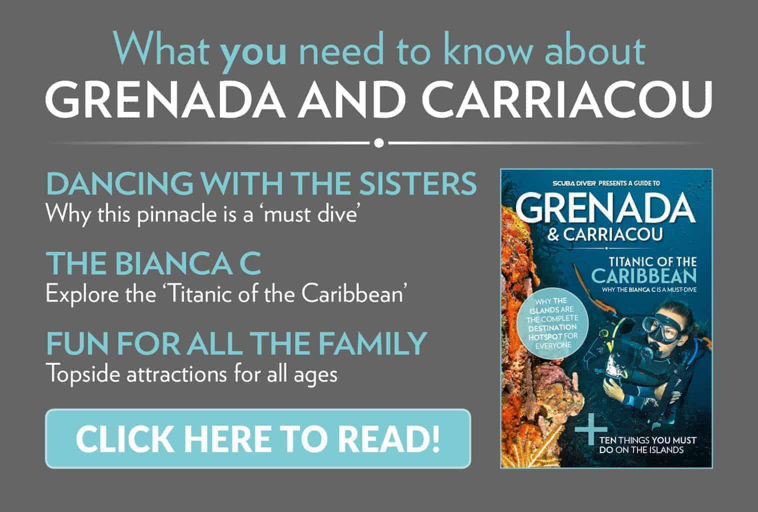 Grenada & Carriacou 1