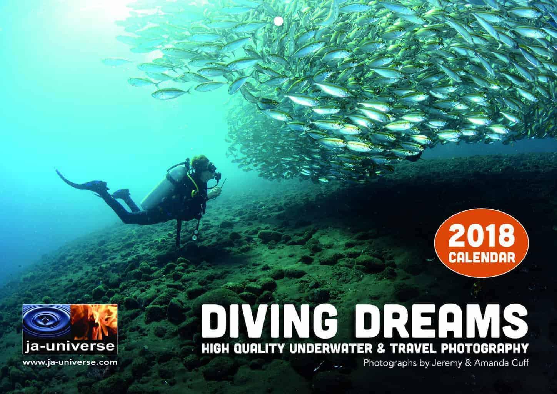 Diving Dreams 1