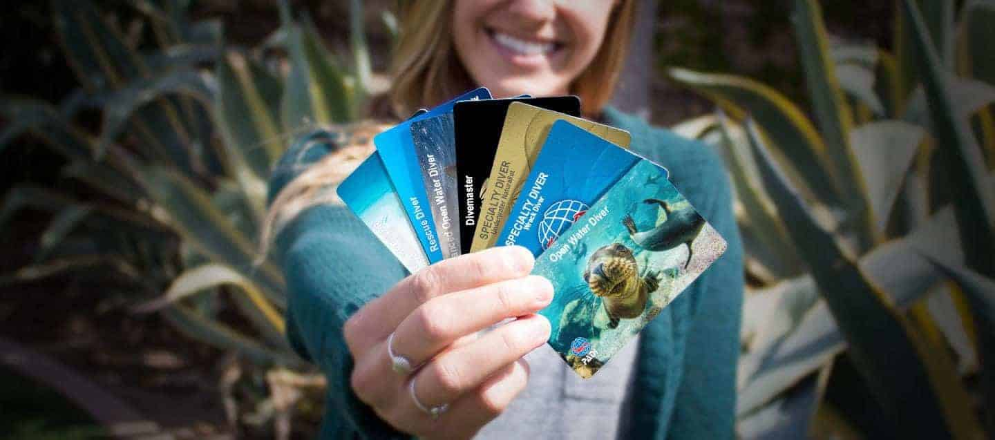 Padi Standards Certification Cards Diving Courses Scuba Diving