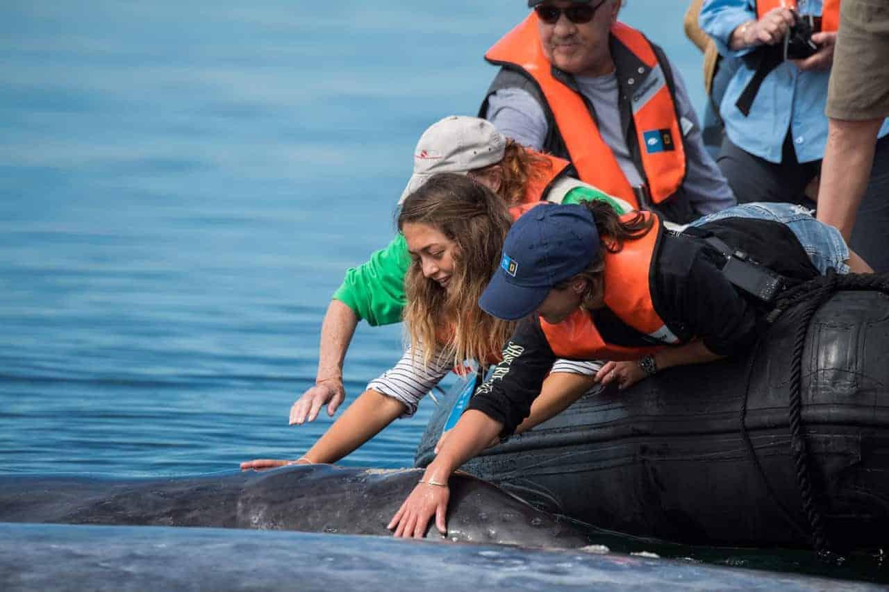 Mae Dorricott explores the Sea of Cortez