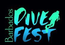 DiveFest Logo