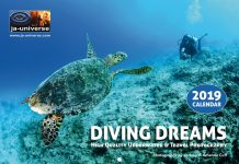Diving Dreams 2019 Calendar