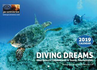 Diving Dreams 2019 Calendar