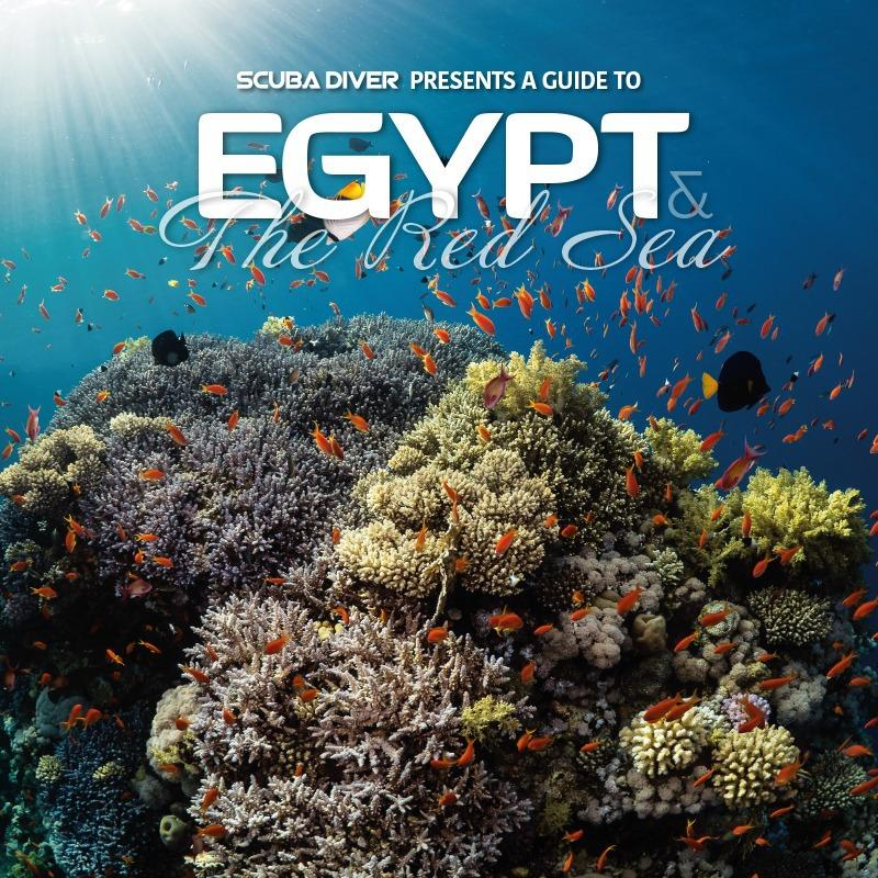 Scuba diver presents a guide to Egypt and the Red Sea