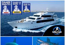 Scuba Travel, Shark Quest, Hurricane