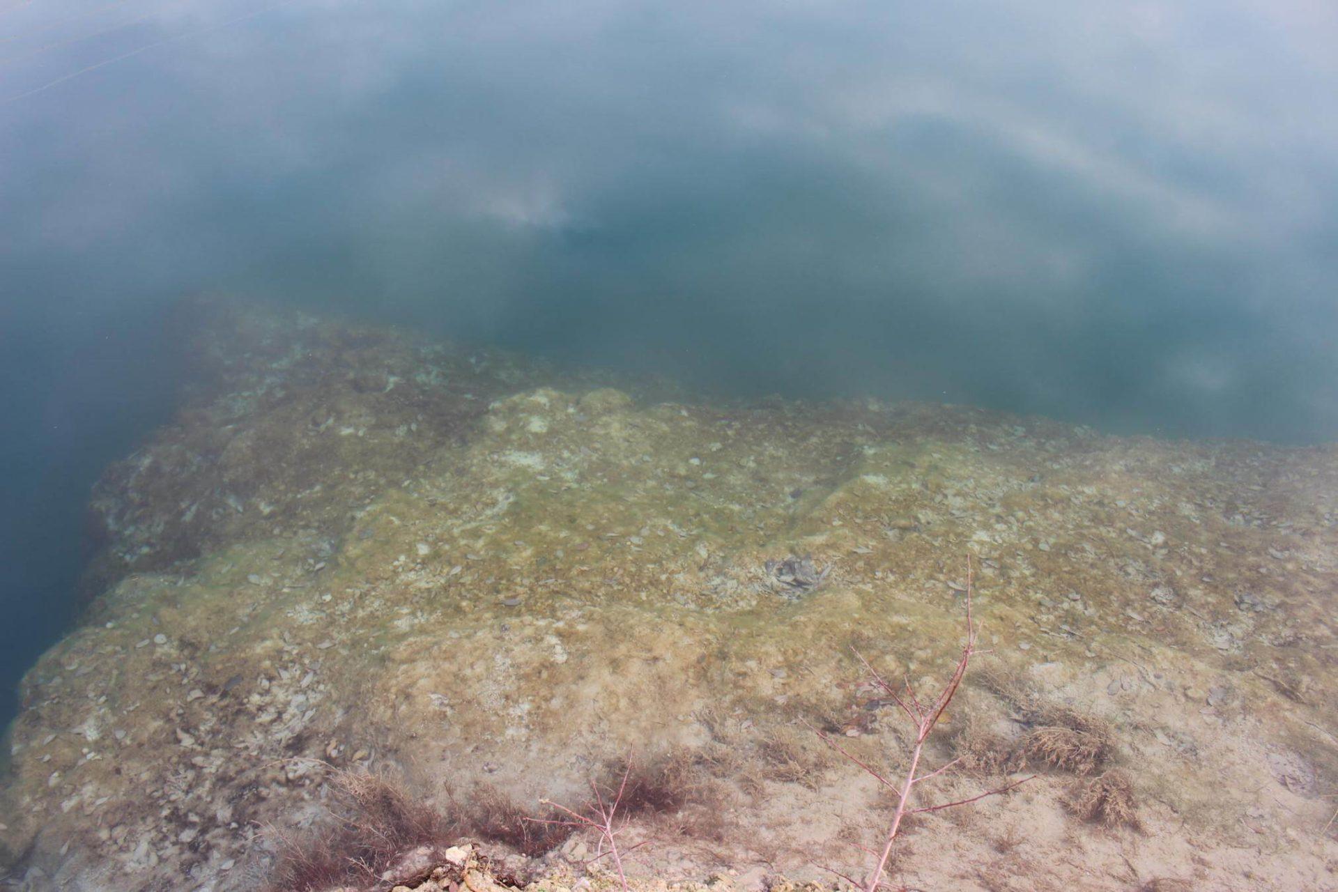 St Andrews Lake