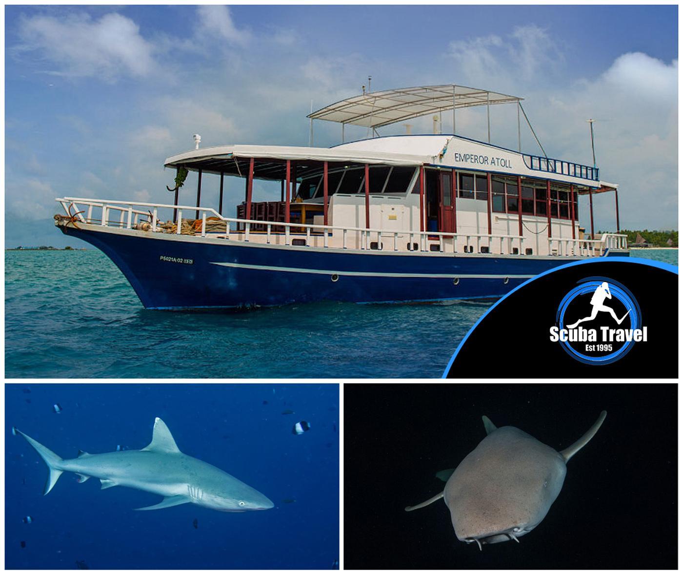 Scuba Travel, Maldives, Emperor Atoll, Sharktastic