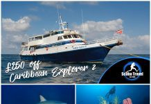 Scuba Travel, Caribbean Explorer 2, Saba and St Kitts
