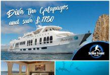 Scuba Travel, Majestic Explorer, Galapagos
