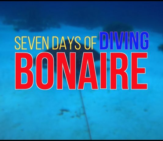 Video of the Week: Seven Days of Diving Bonaire