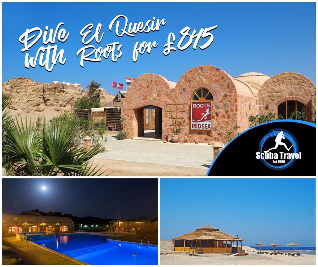 Scuba Travel, Red Sea, Roots, El Quesir