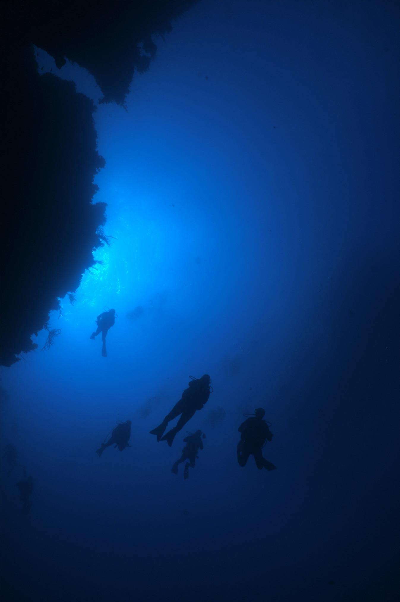 Islands of the Bahamas are a diving paradise 6