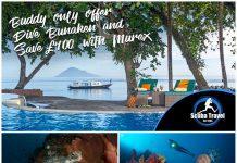Scuba Travel, Murex Resort, Indonesia
