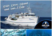 Scuba Travel,Sea Hunter,Cocos Island