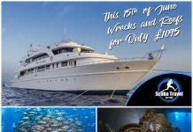 Scuba Travel, Whirlwind, Wrecks and Reefs, Red Sea, Egypt