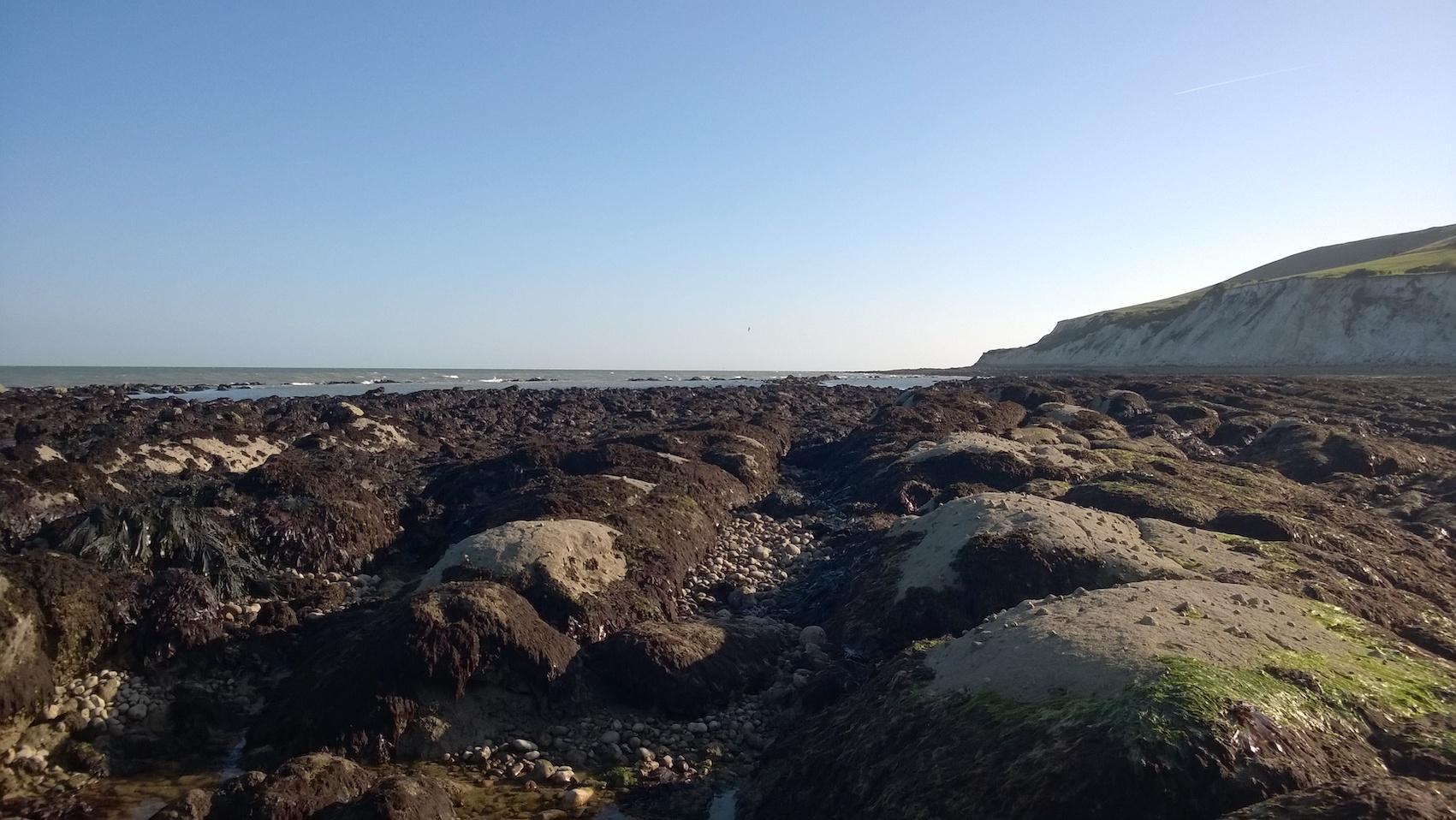 marine conservation zones 1