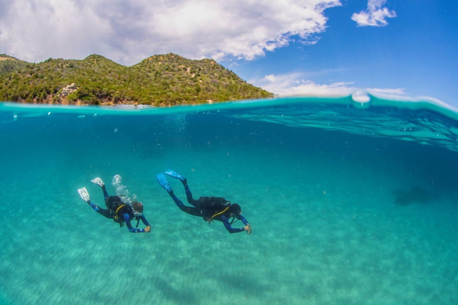 dive industry survey 1