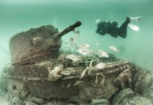 Underwater Photographer of the Week: Paul Pettitt