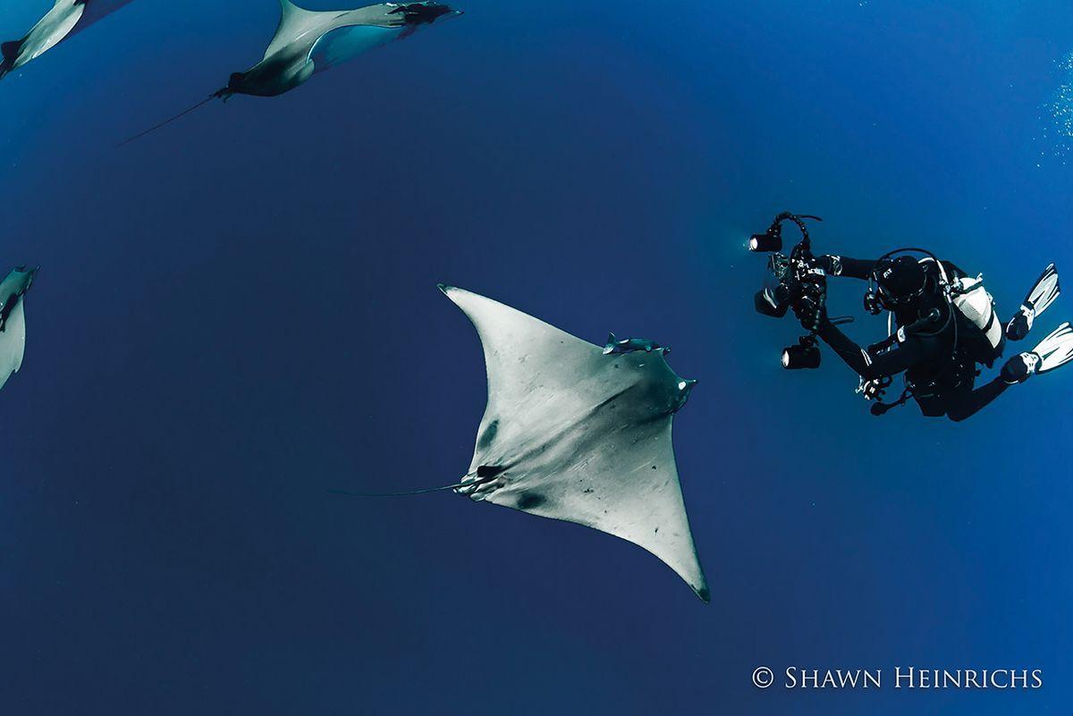Azores Photo By Shawn Heinrichs