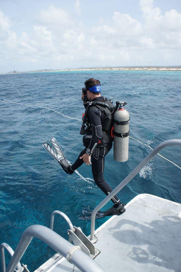 Diving Bonaire 5