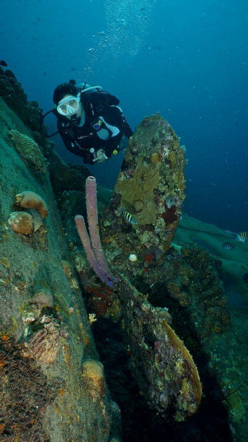 Diving Bonaire 7