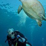 diving oman 5