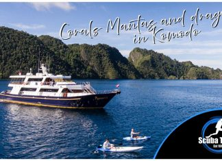 Scuba Travel, Indonesia, Mermaid 2, Komodo, Liveaboard