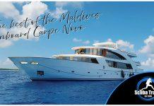 Scuba Travel, Maldives, Carpe Novo, Liveaboard, Best of the Maldives