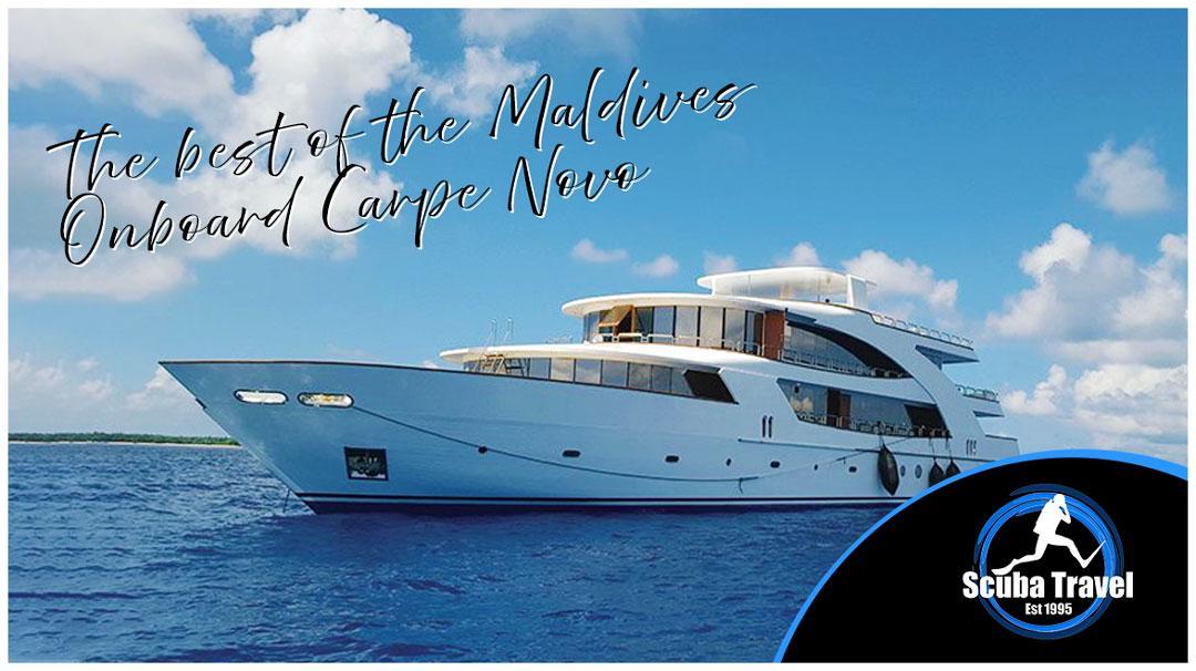 Scuba Travel, Maldives, Carpe Novo, Liveaboard, Best of the Maldives