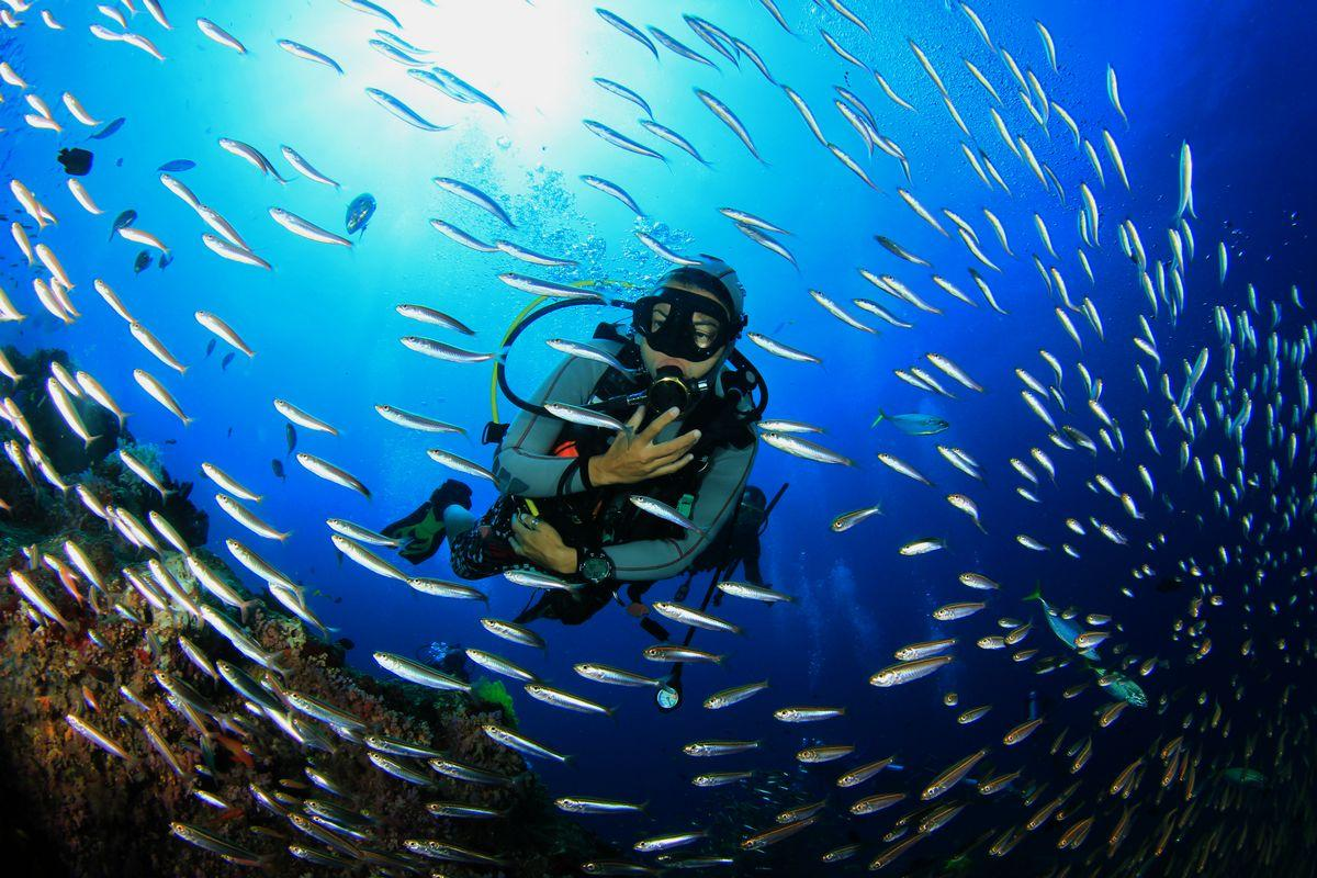 A diver diving with epilepsy