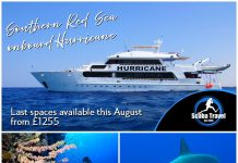 Scuba Travel, Egypt, Red Sea, Hurricane, Liveaboard, Southern Red Sea