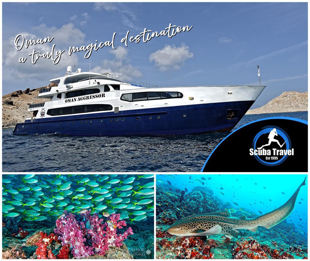 Scuba Travel, Oman Aggressor, Oman, Liveaboards