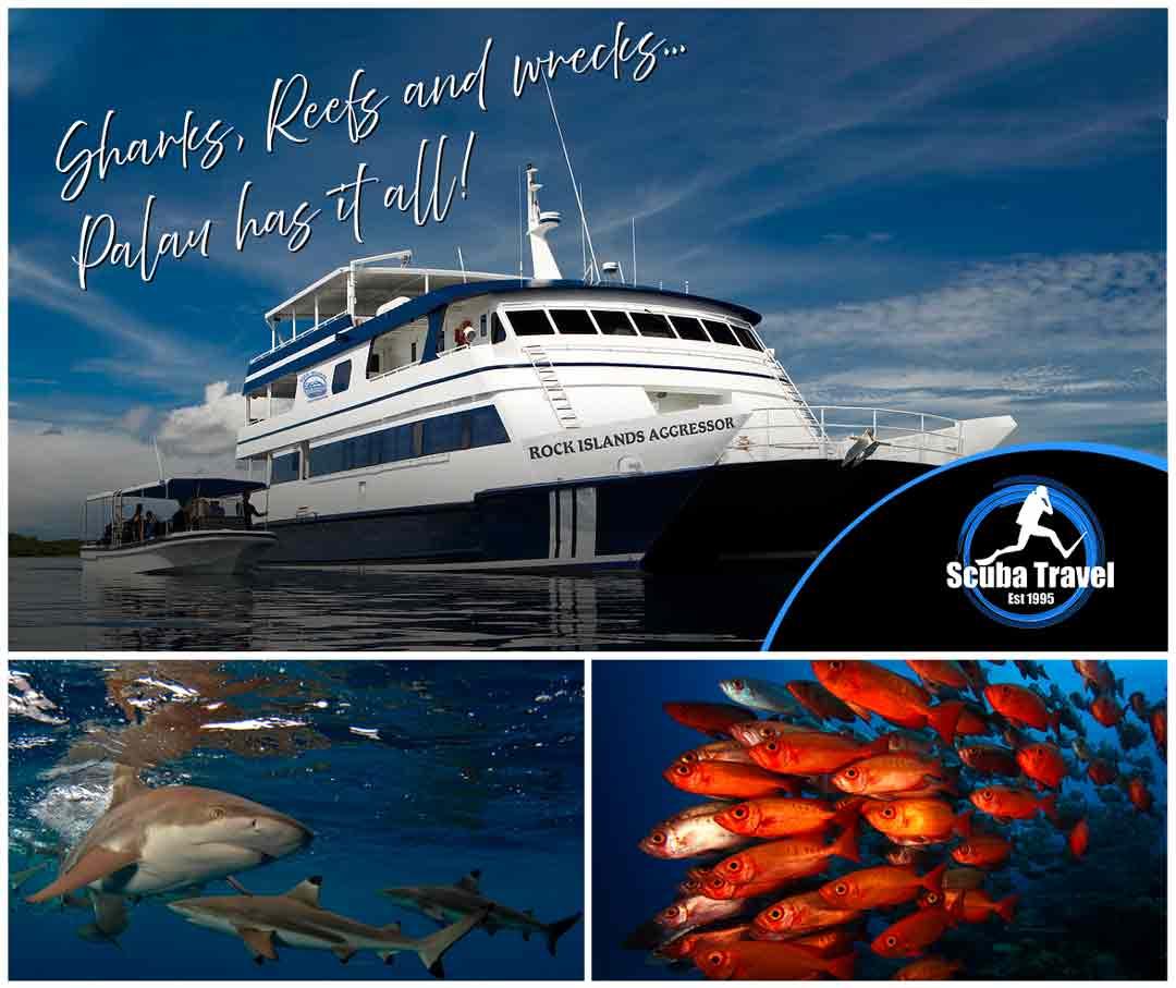 Scuba Travel, Rock Island Aggressor, Palau, Micronesia