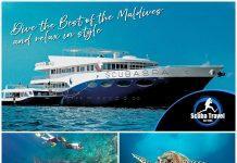 Scuba Diver Magazine 23
