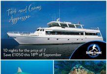 Scuba Travel, Caribbean, Turk and Caicos, Turk and Caicos Aggressor