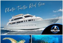 Scuba Travel, Egypt, Red Sea, Whirlwind, Photo Workshop