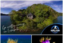 Scuba Travel, Lembeh Resort, Critters of Lembeh, Indonesia, Muck diving