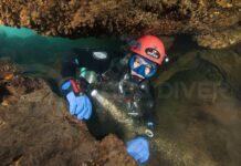 Scuba Diver Magazine 15