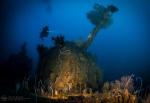 Underwater Photographer of the Week Adam Beard