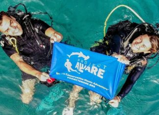 Scuba Diver Magazine 8