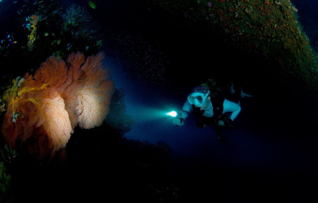 Best Dive Sites of the South Pacific 1