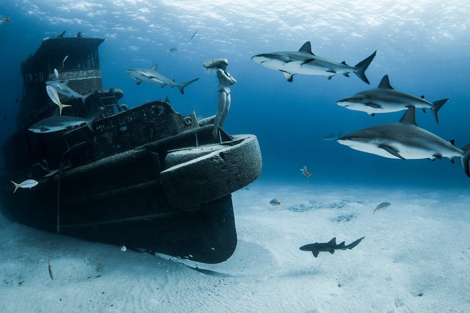 Underwater Freediving Pictures by Lia Barrett