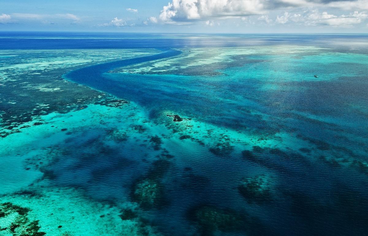 Wakatobi reefs