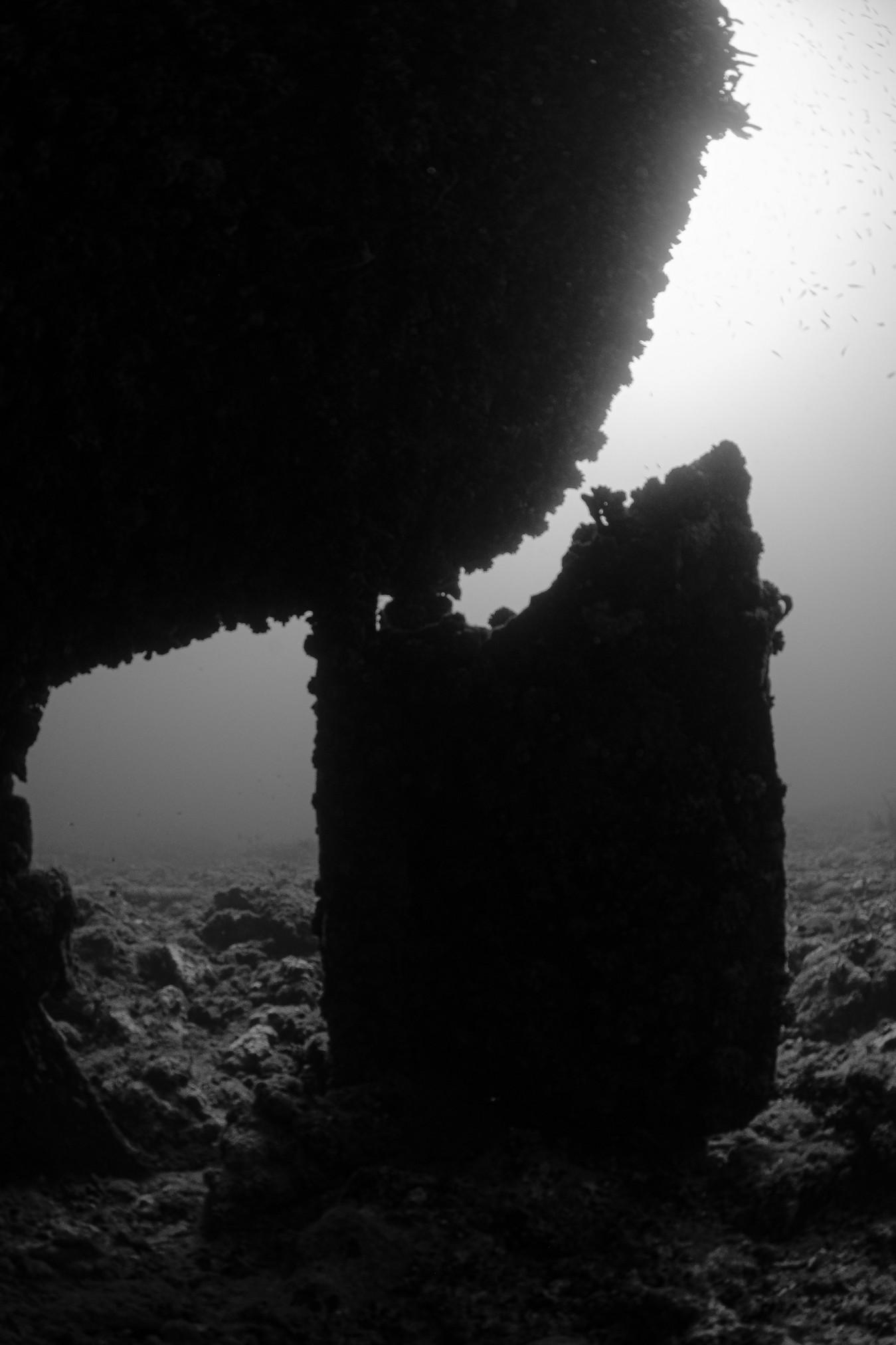 black-and-white shot of the Veronica L shipwreck