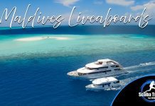 Scuba Travel, Maldives, Liveaboards, Dive Show specials